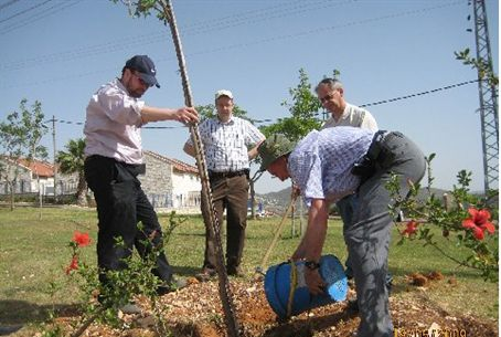 ASFI members plant trees in Samaria
